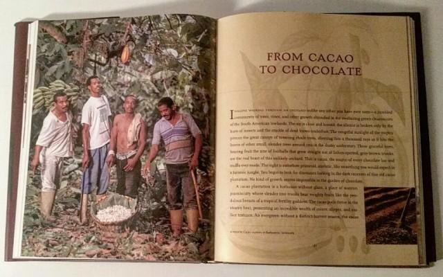 Choco Journalist Book