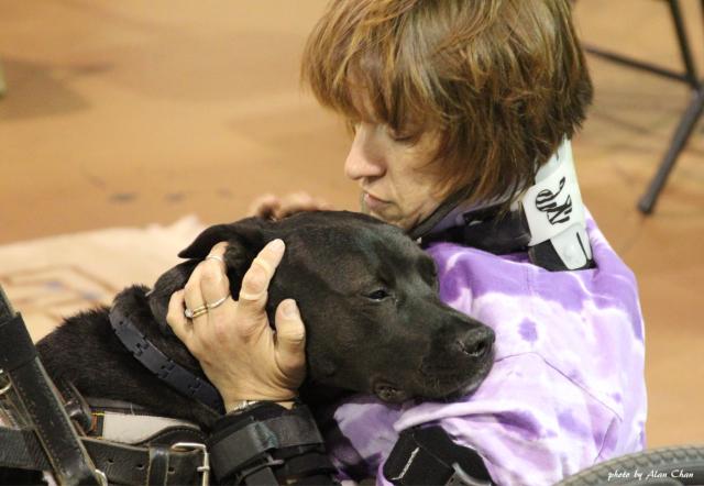 OFP Dog Hug Woman