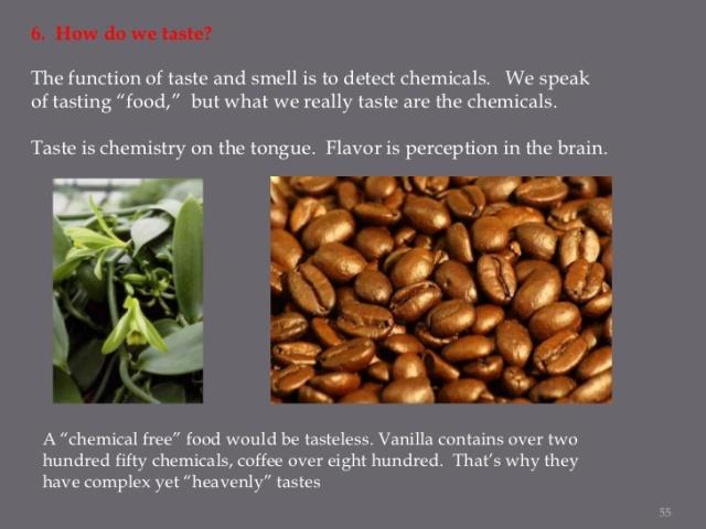 taste-your-brain-on-food-55-728