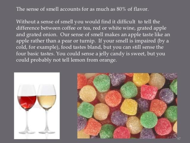 taste-your-brain-on-foodsmelljpg